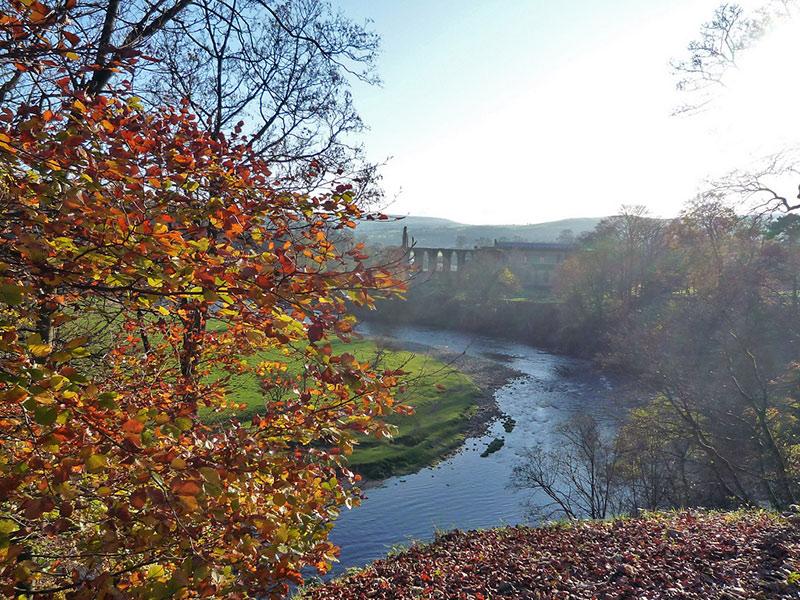 bolton-abbey-autumn-2-800