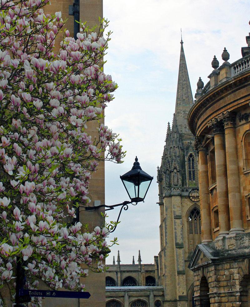 University Church Of St Mary Oxford Photos Tejvan