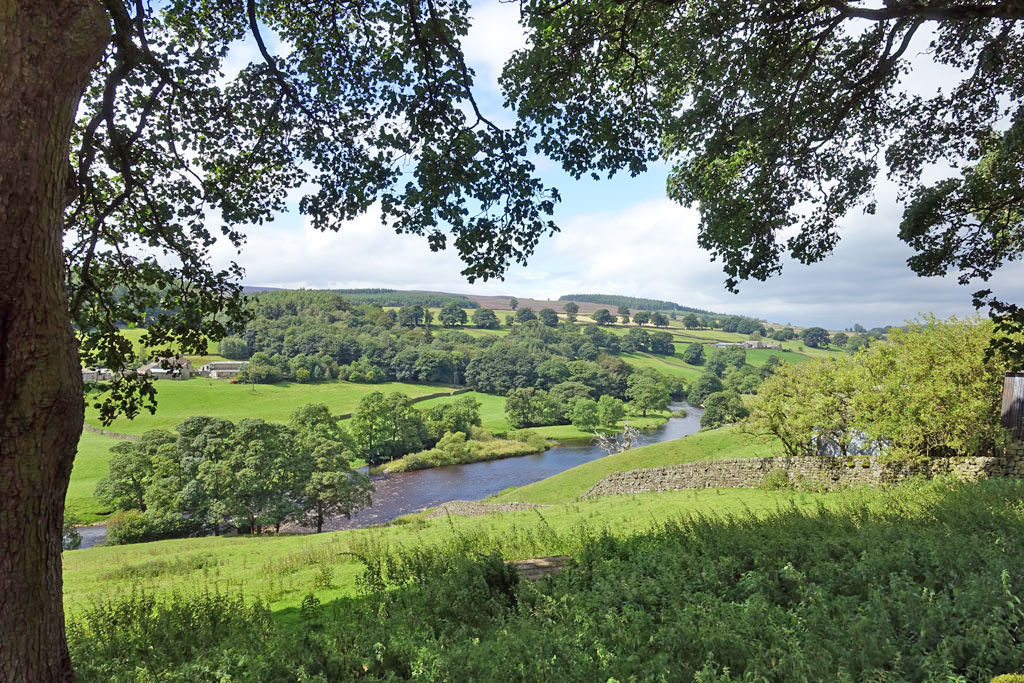 river-wharfe-through-trees