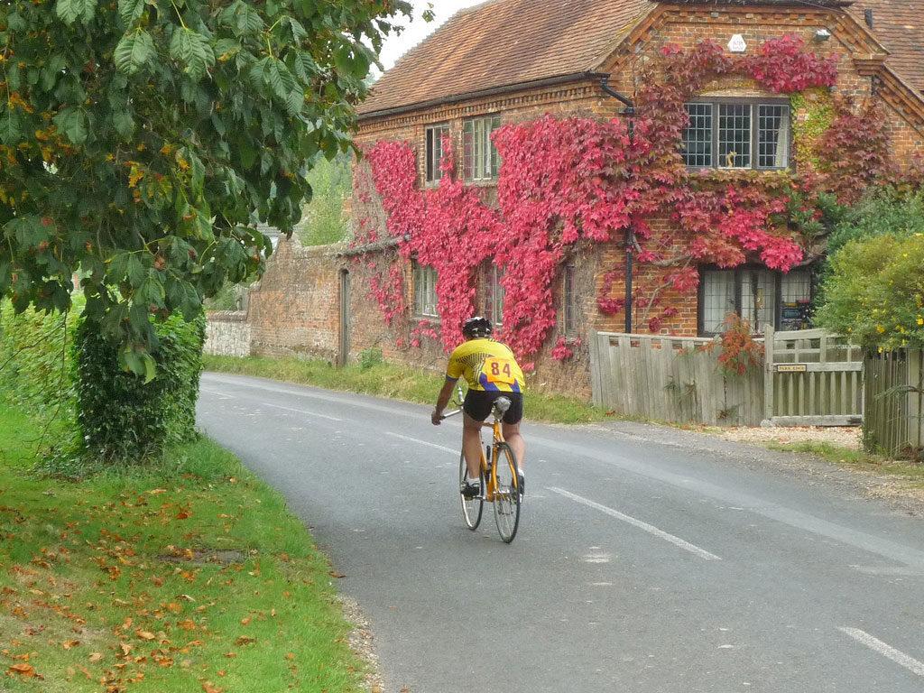 village-country-lane