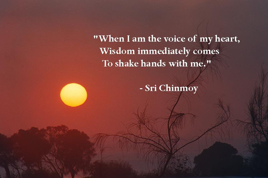 voice-heart-wisdom