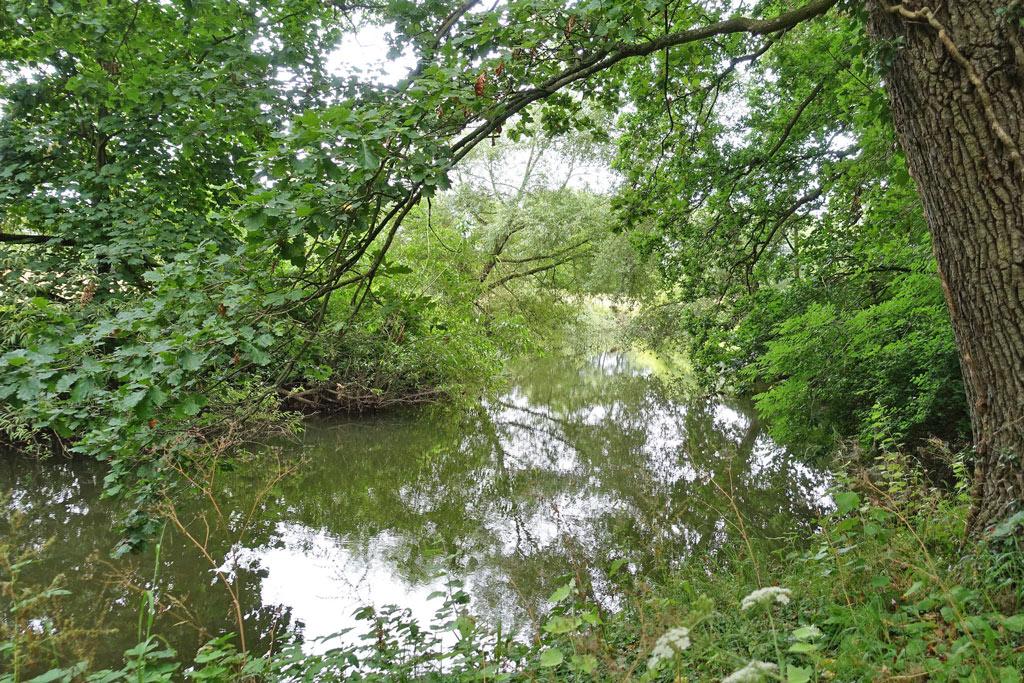 river-thame-