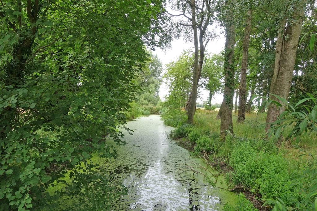 river-thame