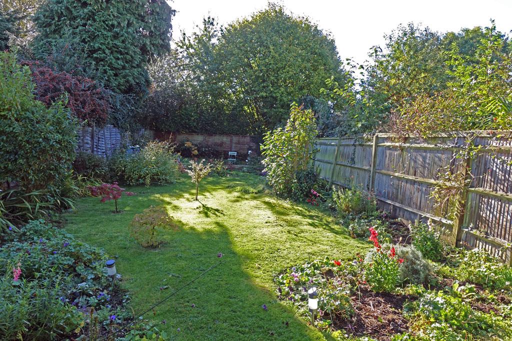 garden-october