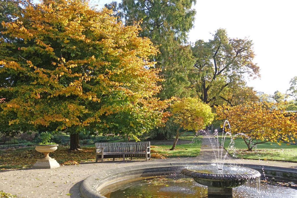 fountain-autumn