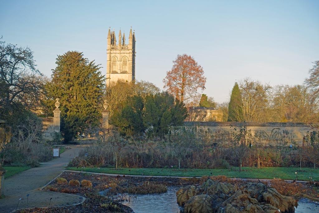 botanic-garden-view
