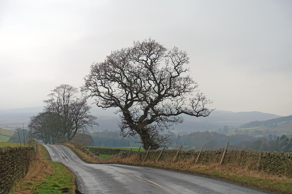 The Road to Burnsall