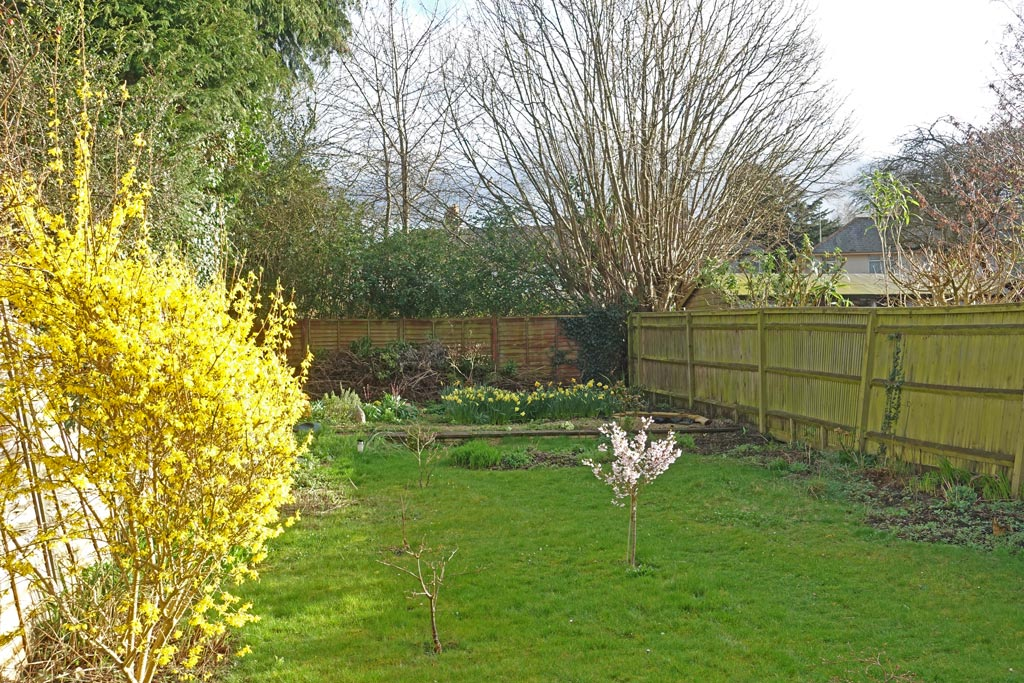 bac-garden